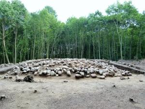Das Hügelgrab im Wald von Buchwalde 3
