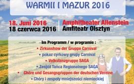 posterA2 Sommerfest 2016